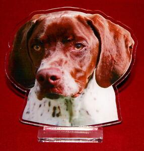 statuette-photosculptee-10x15-cm-chien-braque-francais-1-dog-hund-perro-cane