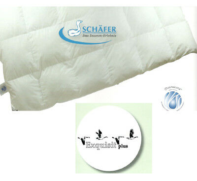 Schäfer Kassettenbett Winter Daunendecke Bett Decke Übergrößen bis 300x300