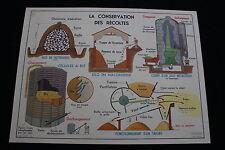 R203 Affiche scolaire papier MDI 17 CONSERVATION RECOLTES 18 PREPARATION ALIMENT