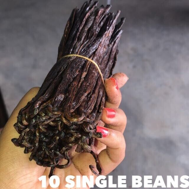 10 Madagascar Vanilla Beans Grade A Bourbon Whole Beans for Baking and Extract