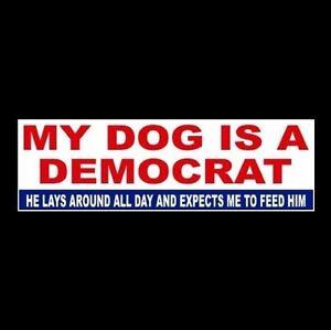 "President Vs Gop >> Funny ""MY DOG IS A DEMOCRAT"" Anti welfare Obama Hillary BUMPER STICKER decal GOP | eBay"