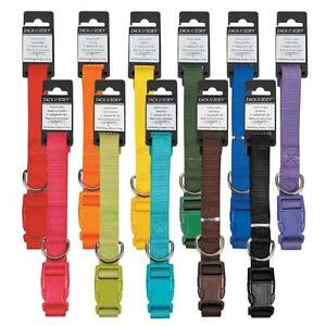 Nylon-Dog-Collar-Zack-amp-Zoey-USA-Seller-11-Colors-4-Sizes-Durable-Puppy