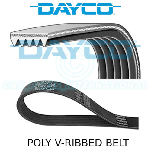 5PK595EE Dayco Poly V Belt Multi-Ribbed Belt Drive Auxiliary,Fan 5 Ribs