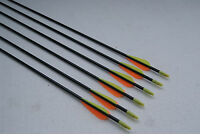 12)30 High Quality Fiberglass Practice Arrow With Glued Point For Recurve Bow