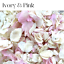 Biodegradable-WEDDING-CONFETTI-IVORY-Dried-FLUTTER-FALL-Real-Throwing-Petals thumbnail 4