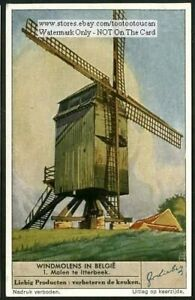 Itterbeek-Belgian-Windmill-Molen-Belgium-60-Y-O-Trade-Ad-Card
