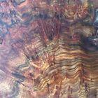 nwcharacterwoods