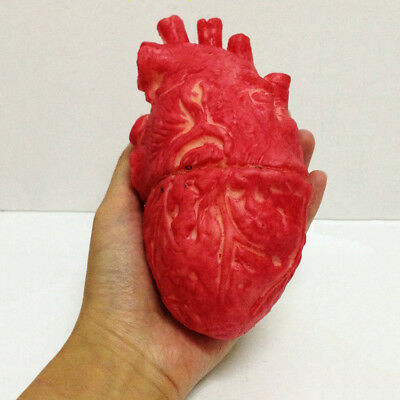 Halloween Human Heart Prop Decoration Realistic Life Size Chop Shop Blood Bloody
