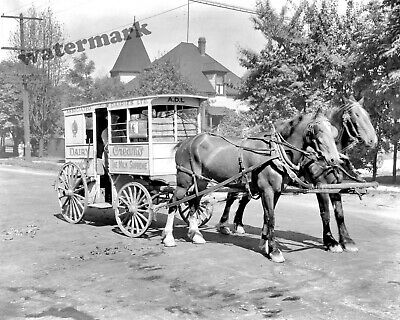 Photograph Thompson/'s Dairy Delivery Wagon /& Horses Year 1927 11x14