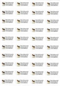 80-Adressetiketten-Beagle-Adressaufkleber-Aufkleber-Etiketten-mit-Motiv-Hund