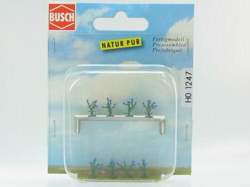 Lot 18008Busch HO 1247 Barbeaux plantes fleurs 8 pièces nouveau dans neuf dans sa boîte