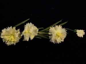 Vintage-Chapellerie-Fleur-Blanc-Bachelor-Bouton-Bleuet-Chapeau-Cheveux-Mariage
