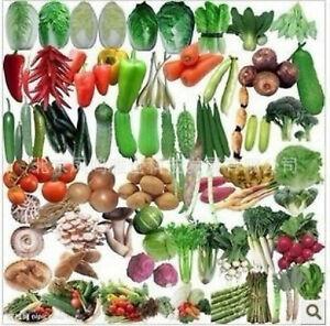 Balcony-Vegetables-Package-Seeds-Plants-Bonsai-Organic-Mix-100pcs-lot