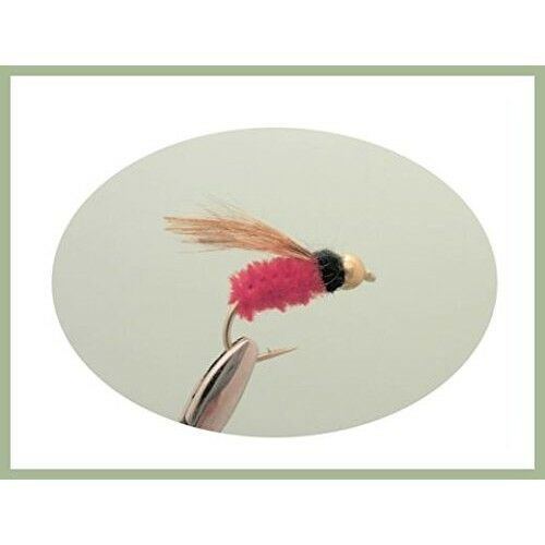 GH Montana Trout Flies 6 pack Red Winged Goldhead Choice of Sizes Montana Fly