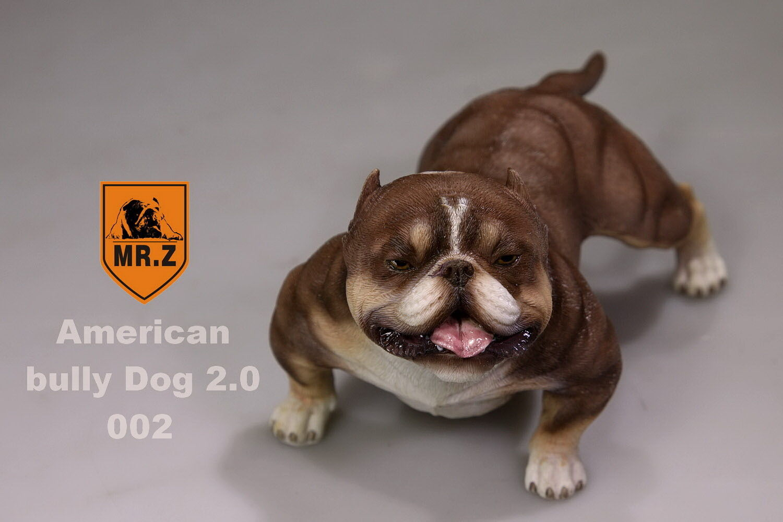 Escala 1 6 para 12  aucion figura  Sr. Z  American Bully Pitbull Color claro 002