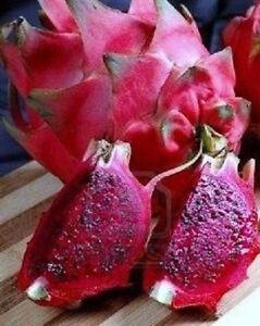 Purpura Carne Pitaya Exotico Raro Fruta Tropical Planta Comestible