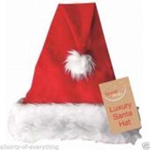 Adult Christmas Luxury Santa Hat Red Furry