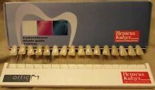 Heraeus Kulzer Farbschlussel Artic Shade Guide 66013530 New In Box