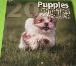 "2019 PUPPIES Dogs  MONTHLY MINI 6X6"" WALL Hanging Calendar -16-Month   Bachmann"