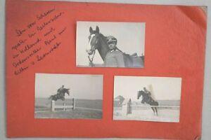 Springreiten-Ordensritter-Holland-Originalfotos
