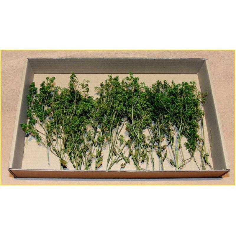 Mini-foglie verde confezione medio +/- 30 gr   Er Decor - ER.2072