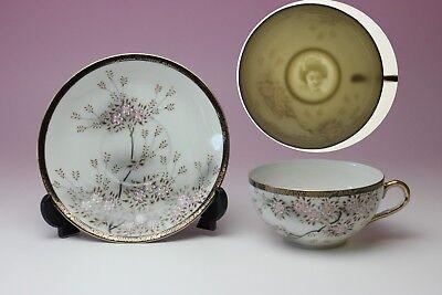 Cherry Tree Sparrow Blue Rim Porcelain Lithophane Geisha Cup /& Saucer New Japan
