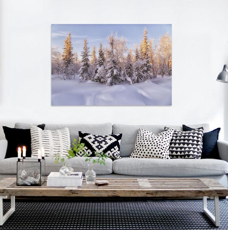 3D Wald schnee 533 Fototapeten Wandbild BildTapete AJSTORE DE Lemon