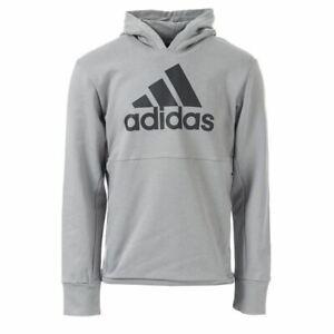 Détails sur Hommes Adidas Originals x UNDEFEATED Tech Regular Fit Sweat à Capuche Dans Gris afficher le titre d'origine