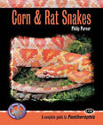 Corn and Rat Snakes by Philip Purser (Paperback, 2006)
