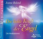 Die lichte Kraft der Engel (2013)