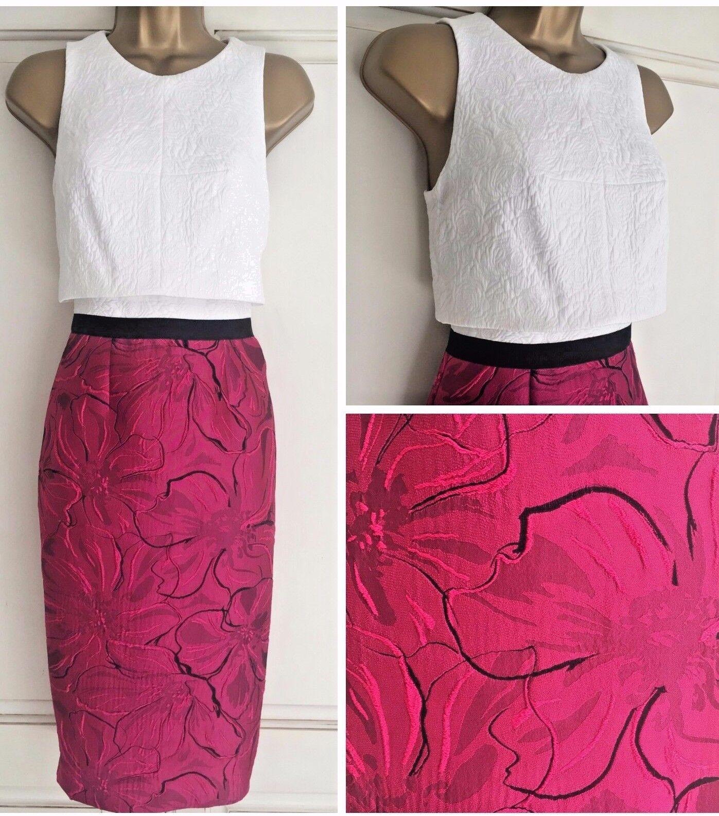 Nouveau Ex Coast Ayla Rose Ivoire Jacquard Style Robe De Cocktail Taille 8 - 18