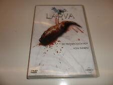 DVD  Larva