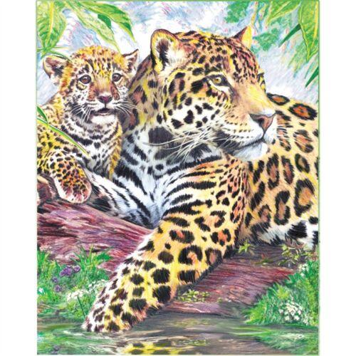 """Lápiz de color por número de Kit 8.75/""""x11.75/"""" Jaguar familia"""