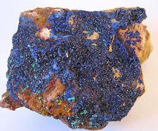 +++ fine! Azurit xx // Aouli, Midelt, Marokko +++ Stufe azurite mineraux Z25