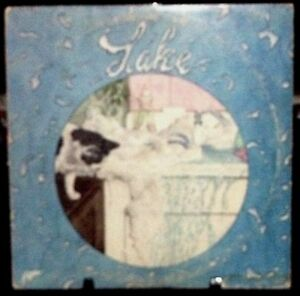 LAKE-Self-Titled-Record-Album-Released-1976-Vinyl-Record-Collection-US-pressed