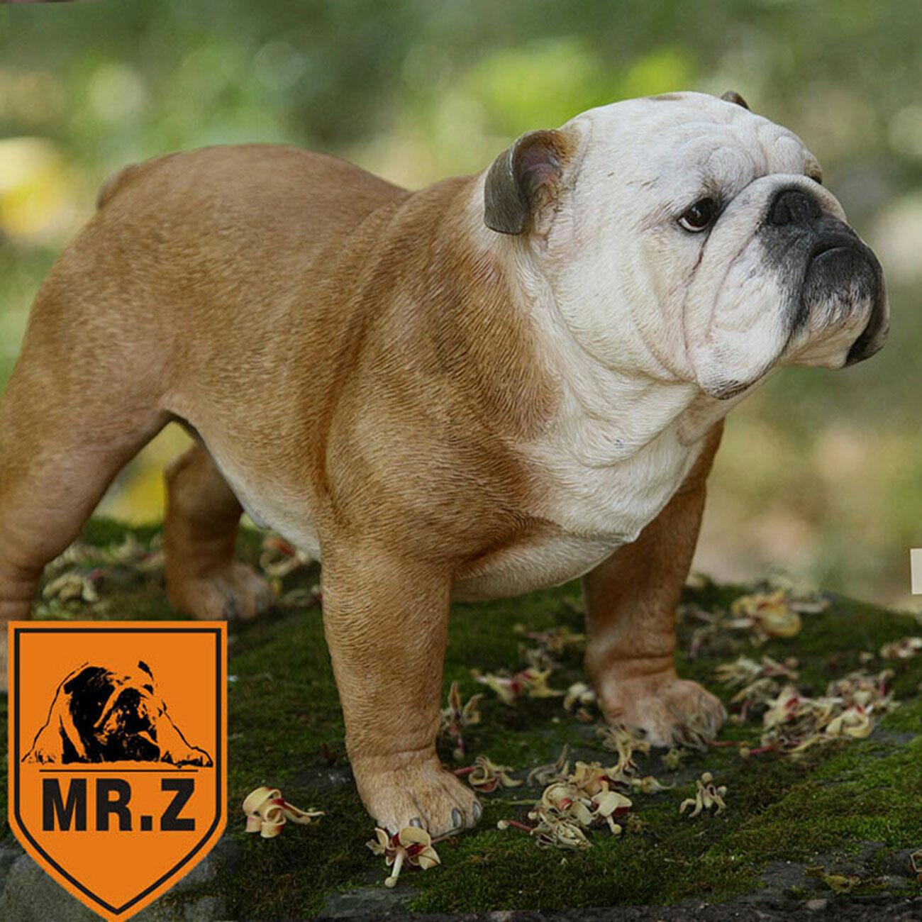 1 4th Mr. Z Británico Bulldog simulación de resina modelo de Decoración Figura De Acción Nueva