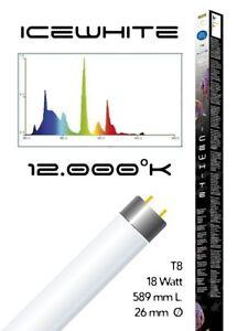 Lampada-t8-Icewhite-12000-k-ottima-per-acquari-18Watt-589mm