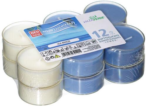 12 Maxi Duftteelichter Sea Breeze  transparente Hülle Duft Kerzen Acryl Cup