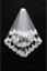 White-Ivory-Layers-Wedding-Bridal-Veil-Lace-Cathedral-Length-Birdcag-Edge-Bride thumbnail 2