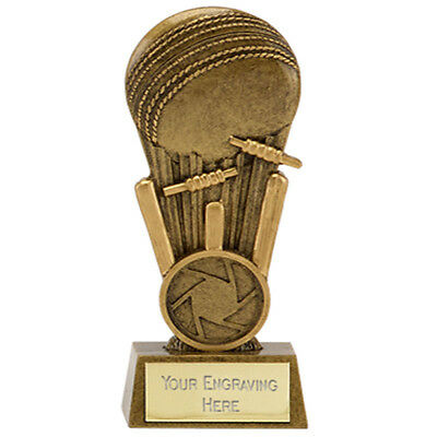 Creatief A1649aa Resin Cricket Trophy Size 10.25 Cm Free Engraving ( Half Price)