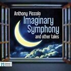 Piccolo Imaginary Symphony & Other TA 0896931001045 by Moravian Philharmoni CD