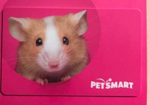 """PETSMART GIFT CARD """"HAMSTER"""" NO VALUE COLLECTIBLE NEW"""