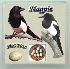 MAGPIE GARDEN BIRD COASTER  LIMITED EDITION XMAS GIFT