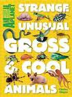 Animal Planet Strange, Unusual, Gross & Cool Animals by Animal Planet, Charles Ghigna (Hardback, 2016)