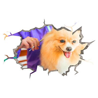 S092 Dog Grooming Salon Animals Window Wall Decal 3D Art Stickers Vinyl Room