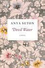 Devil Water by Anya Seton (Paperback / softback, 2014)