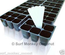 Seedling SEED STARTER TRAY, easy-out 144 cells + BONUS!