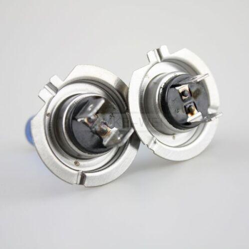 toimitilaa.fi 2x H7 12V Xenon Head Lampen Wei Halogen ...