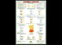 Professional Fitness Wall Chart Abdominal Exercises Abs Workout Wall Poster