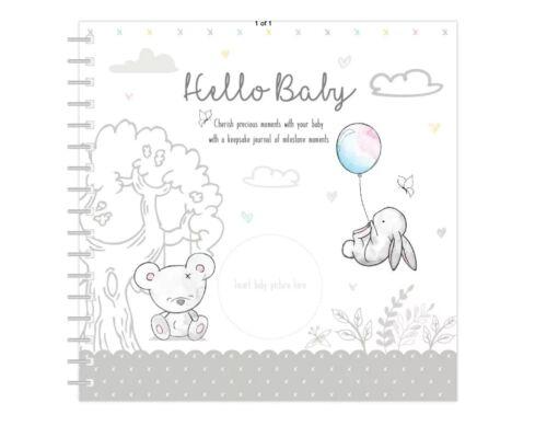 HELLO BABY RECORD BOOK HELLO BABY KEEPSAKE JOURNAL RECORD BOOK BY MILESTONE